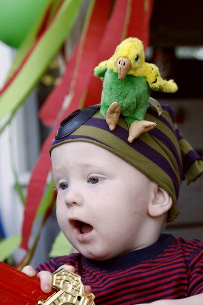 Add a pet parrot to a DIY Pirate Costume
