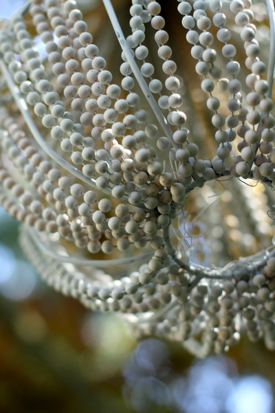 Make a beaded chandelier dollar store crafts make a beaded chandelier for 11 aloadofball Image collections