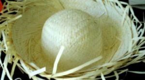 silly hats - tom sawyer