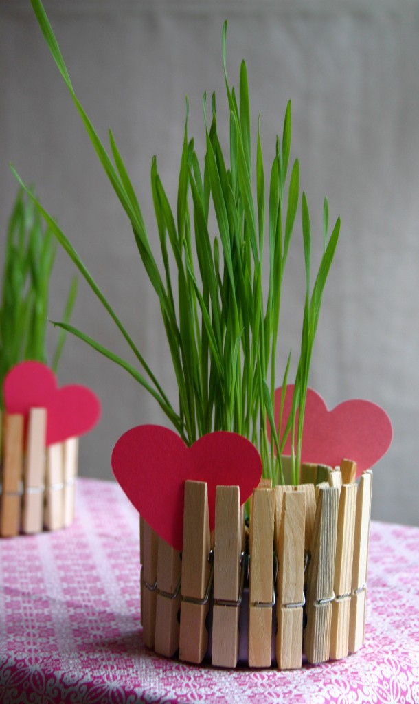 Make a Wooden Clothespin Planter » Dollar Store Crafts