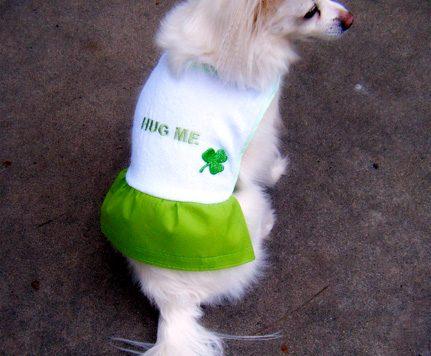 diy doggy coat