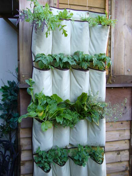Dollar Store Crafts » Blog Archive » Make a Vertical Vegetable Garden