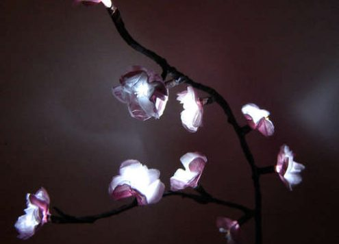 cherry blossom lights