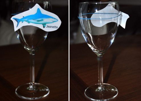 shark week wine charms
