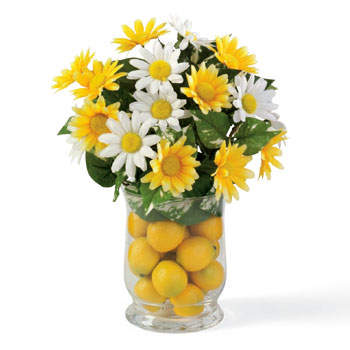 Sunny lemon daisy centerpiece dollar store crafts Where did daisies originate