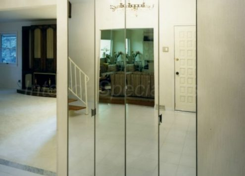 mirrored doors