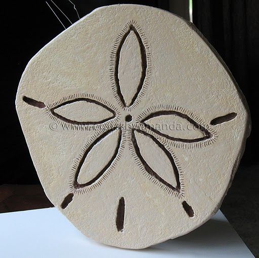 sand dollar how to make