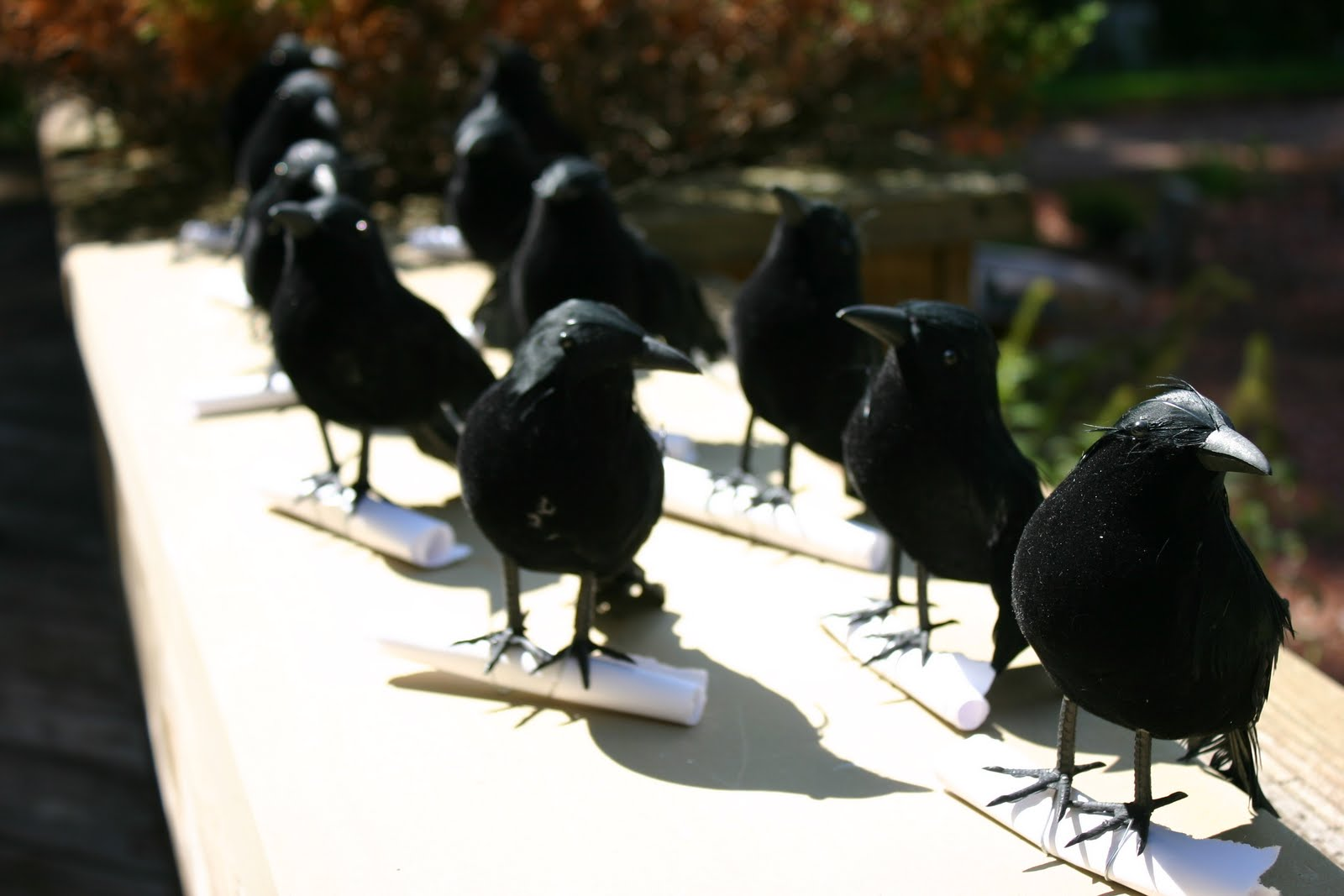Make Crow Halloween Party Invitations – Dollar Store Crafts