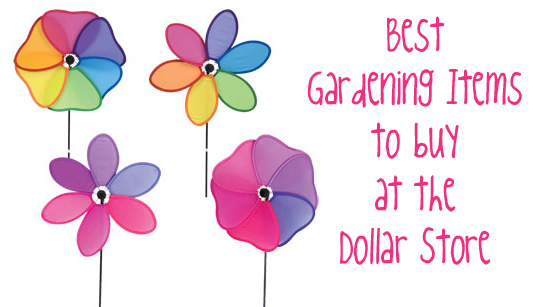 Shopping at DollarTreecom Garden Edition Dollar Store Crafts