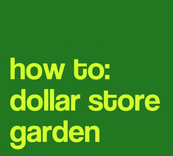 how to: dollar store garden
