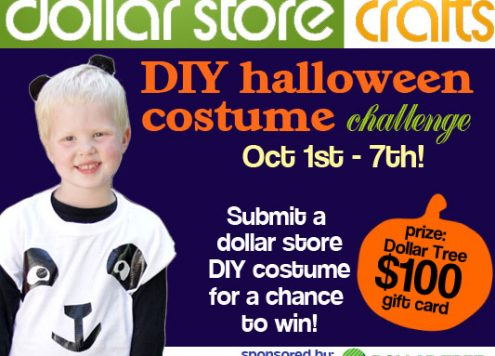Halloween Costume Challenge at Dollar Store Crafts