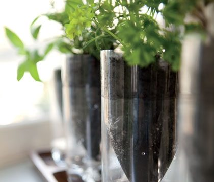 Make self-watering recycled bottle planters