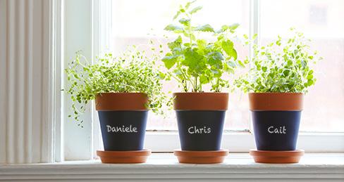 Gratitude Planter