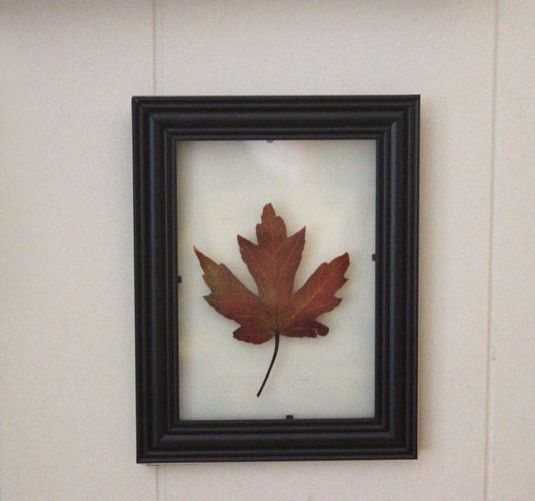 fall art: floating leaf wall art