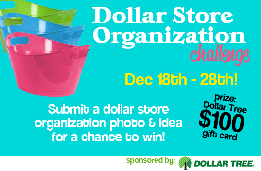 Dollar Store Crafts organization challenge
