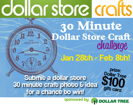 30 minute dollar store craft challenge