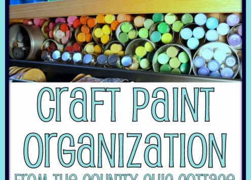 Organize craft paints with recycled cans