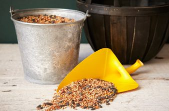 milk jug scoop