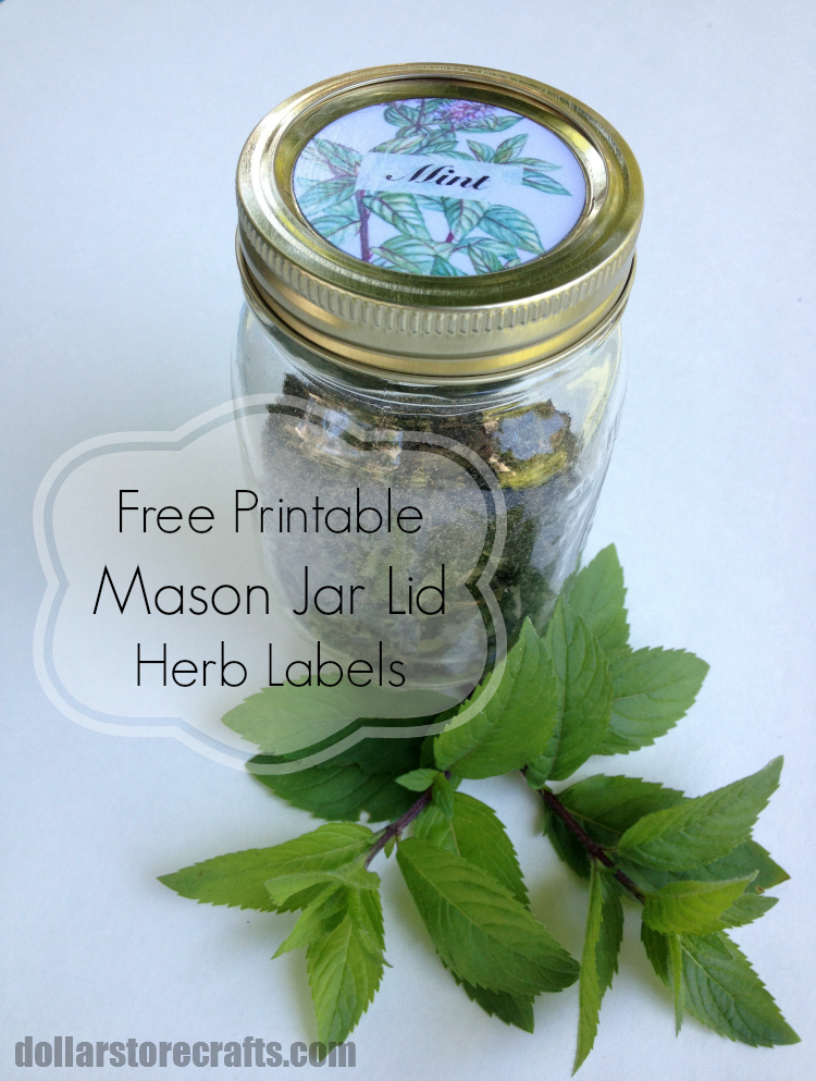 Free Printable Mason Jar Lid Labels For Herbs With Dollar