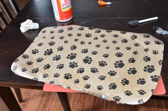 Tutorial: Pet Food Place Mat