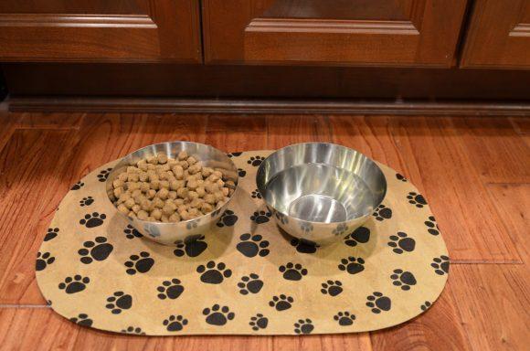 Tutorial: Pet Food Place Mat