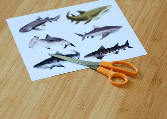 cut out sharks