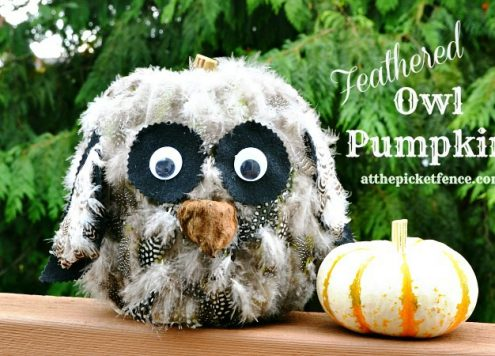 feathered friend owl pumpkin
