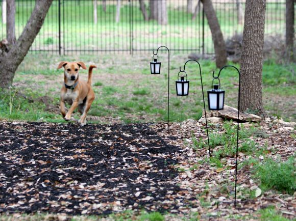 DIY Hanging lanterns