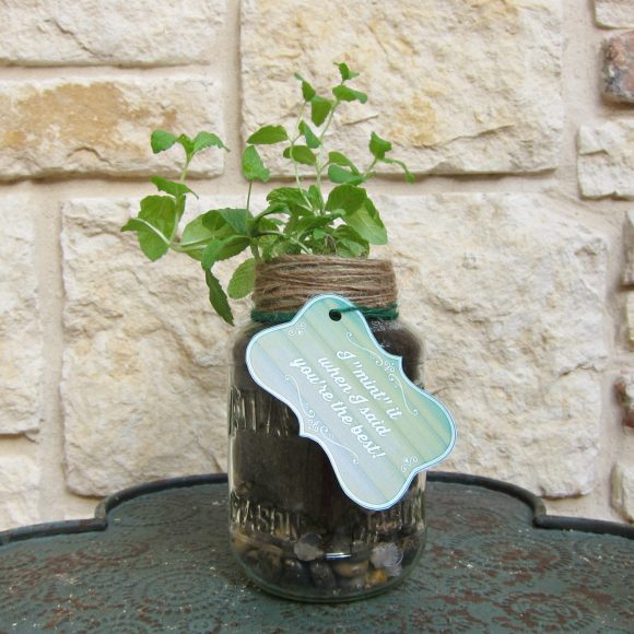 Father's Day Mason Jar Plant gift with printable - DollarStoreCrafts.com