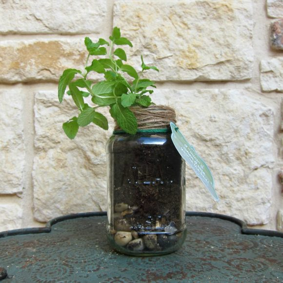 Father's Day Mason Jar Plant gift with printable - DollarStoreCrafts.com fathers day gift
