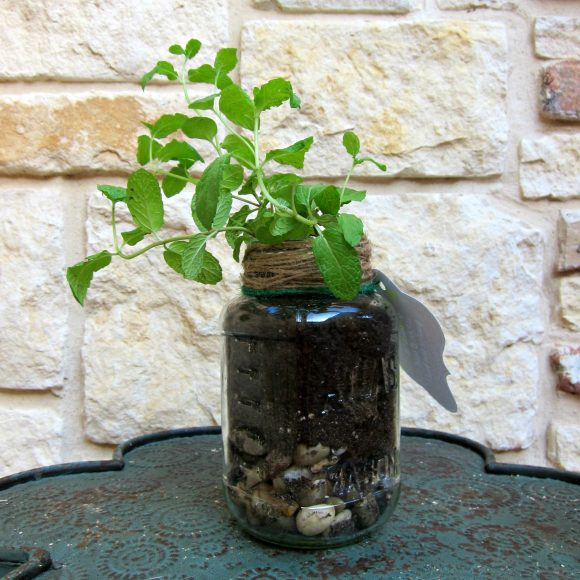 Father's Day Mason Jar Plant gift with printable - DollarStoreCrafts.com mason jar gift