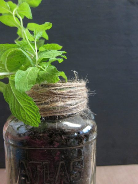 Father's Day Mason Jar Plant gift with printable - DollarStoreCrafts.com step 2
