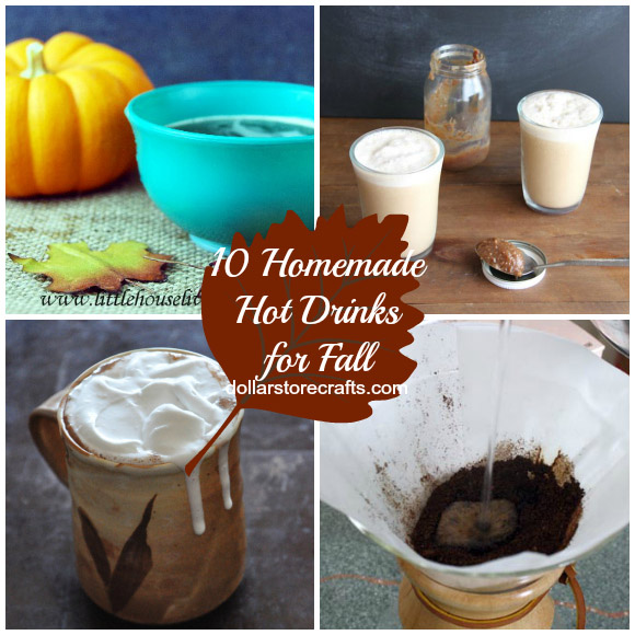 10 Homemade Hot Drinks for Fall