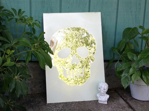 Frosted Skull Mirror