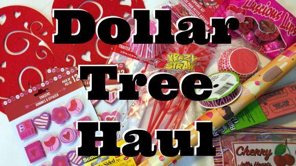 Video Dollar Tree Valentine S Day Haul Dollar Store Crafts
