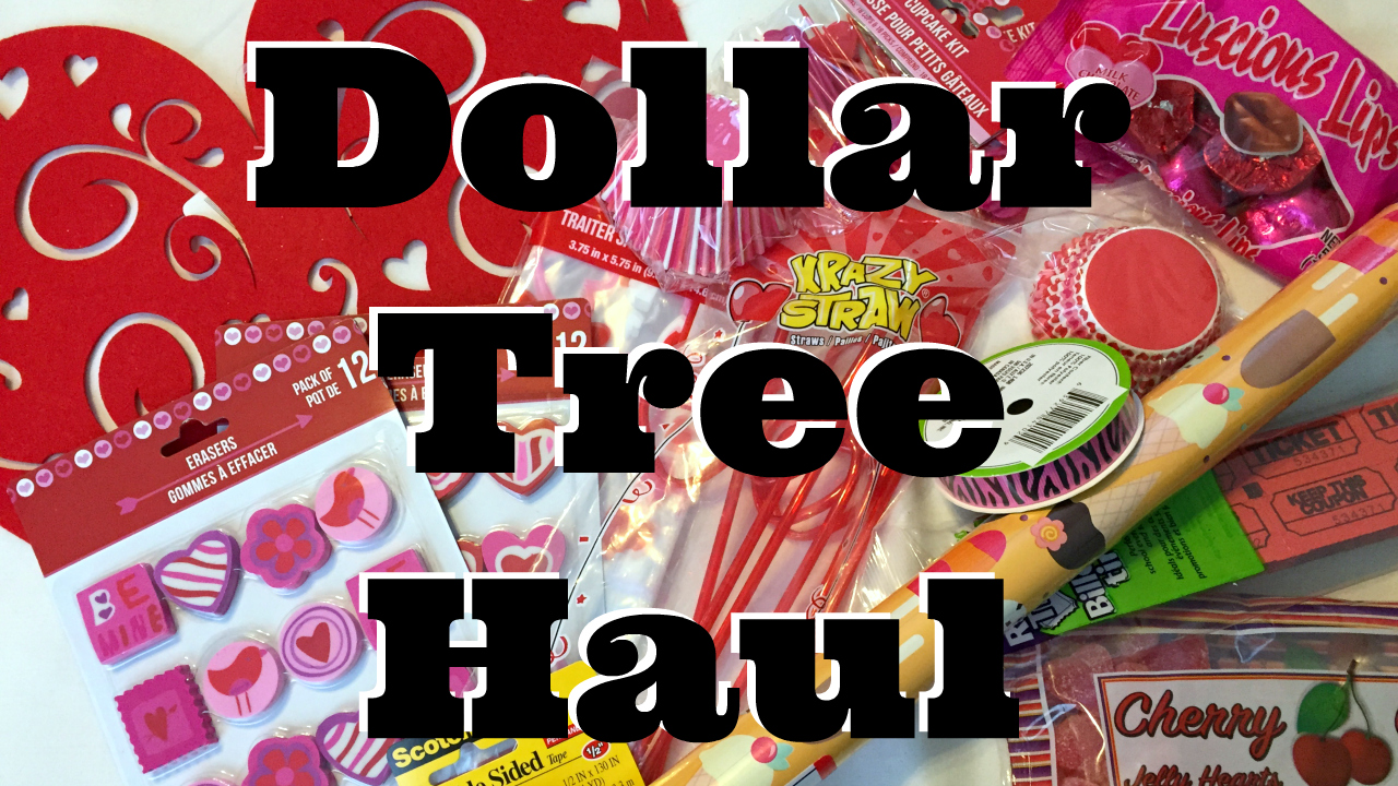 Video Dollar Tree Valentines Day Haul Dollar Store Crafts