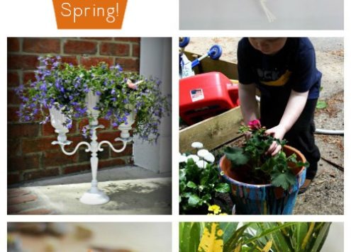 10 DIY Planters that Work Inside or Out - Get your backyard spring-ready or bring some spring beauty indoors with these DIY planters. They'll work inside or outside.