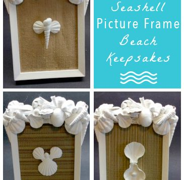 Sea Shell Picture Frame Tutorial - Want a unique way to display the shells you collect at the beach this summer? Try making this easy picture frame!