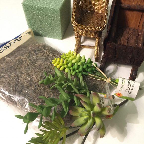 Succulent Sleighs 1