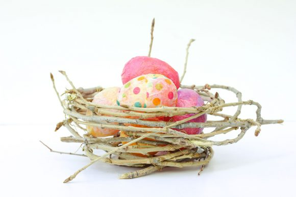 Twig Bird Nest
