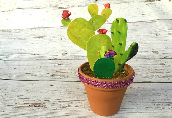 How to Make a Photo Cactus Garden