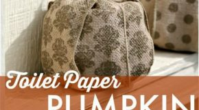 Make a Pumpkin... out of Toilet Paper? Fall craft idea